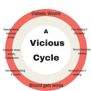 Diabetic Wound Cyle